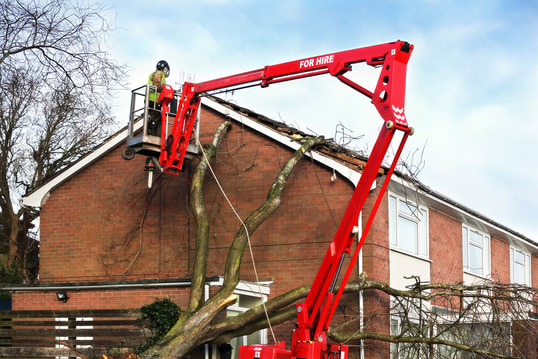 EMERGENCY TREE SERVICES NOTTINGHAM